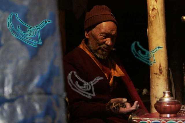 Thementag-Himalaya-Koeln-Hamsah-2013